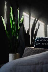 A picture of a couch by a window