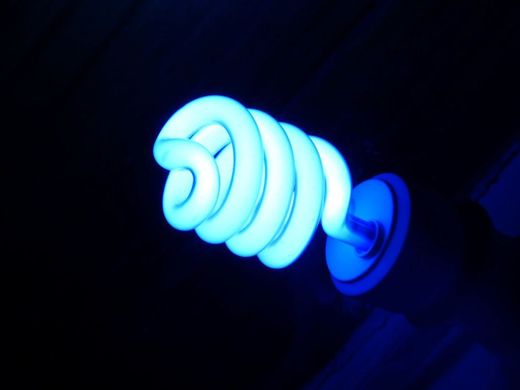 Is blue light harmful to the eyes? That's what we're here to find out. In this picture, a lightbulb is shown.